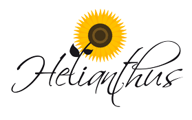 Helianthus – Val di Sole